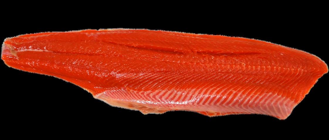 Eating Fish – Good & Bad!